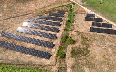 Setor agrícola já colhe ganhos energéticos e de sustentabilidade com soluções fotovoltaicas